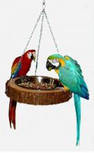 hängende Futter- Wasserschale für Aras